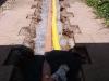 Rohr- und Drainage-Verlegung